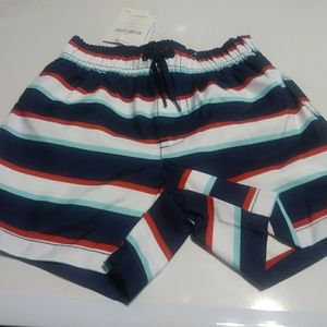 Gymboree multi color striped bathing short